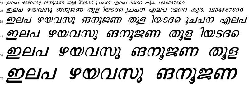 J*Saroja Italic Malayalam Font