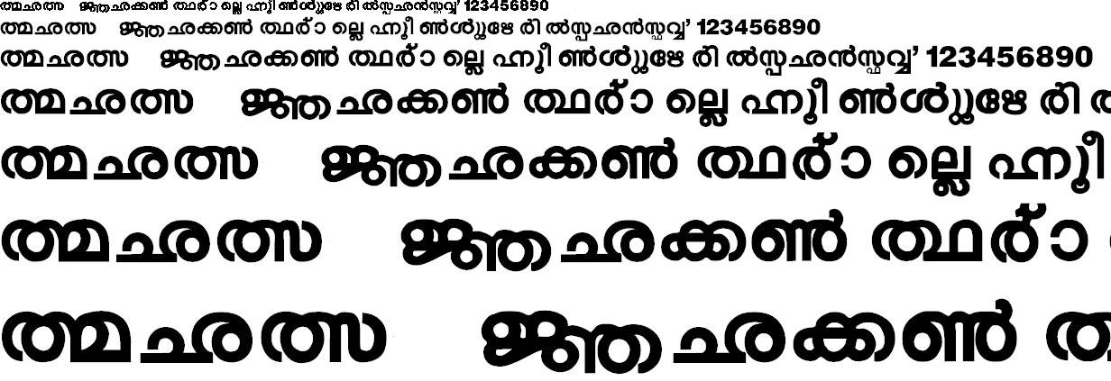 ML_Rani Malayalam Font