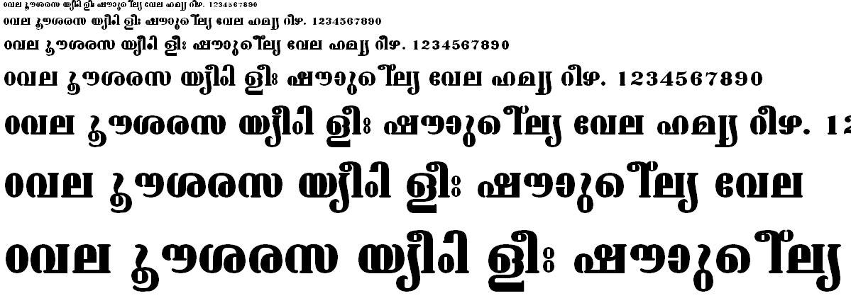 ML_TT_Ashtamudi Bold Malayalam Font