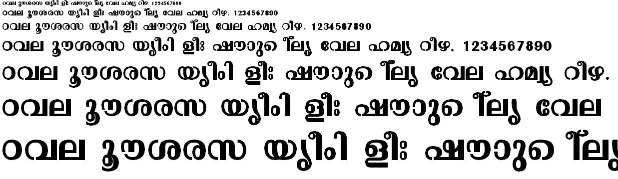 ML_TT_Malavika Bold Malayalam Font