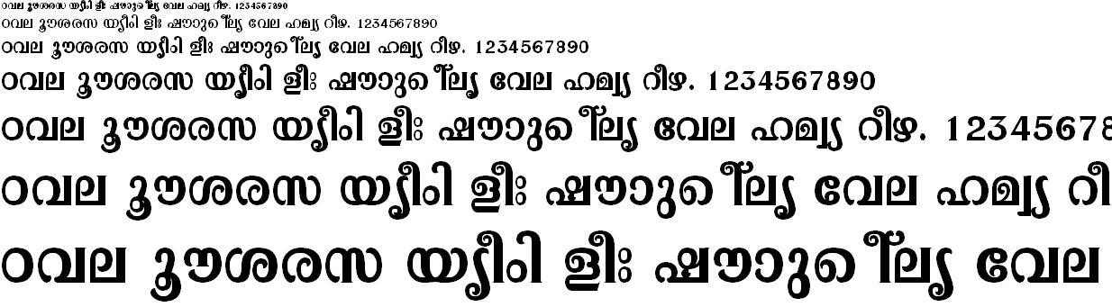 ML_TT_Pooram Bold Malayalam Font
