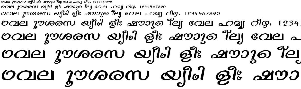 ML_TT_Vinay Bold Malayalam Font
