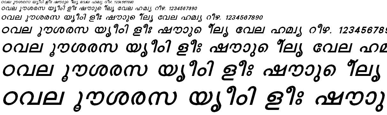 FML-TT-Karthika Bold Italic Malayalam Font
