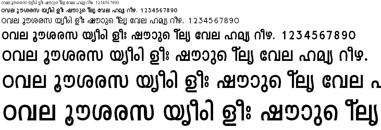 FML-TT-Leela Bold Malayalam Font