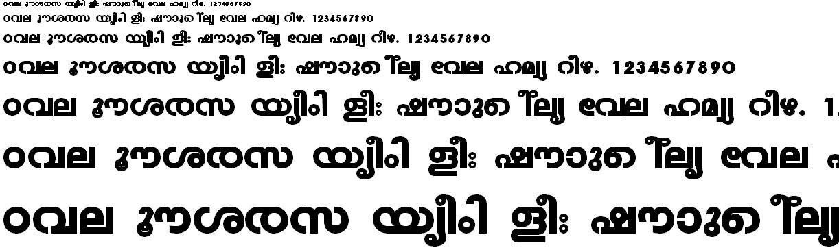 FML-TT-Veena Heavy Malayalam Font