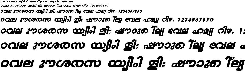 FML-TT-Veena Heavy Italic Malayalam Font